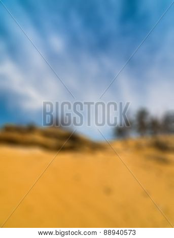 Trees and rocks on a sand