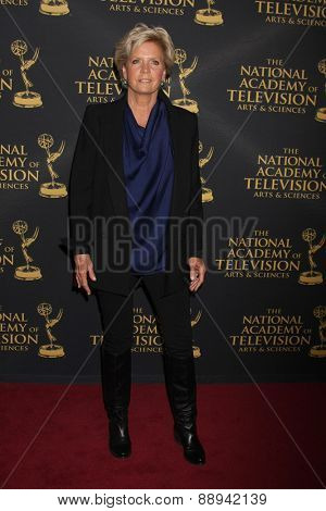 LOS ANGELES - FEB 24:  Meredith Baxter at the Daytime Emmy Creative Arts Awards 2015 at the Universal Hilton Hotel on April 24, 2015 in Los Angeles, CA
