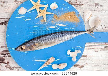 Delicious Fresh Mackerel Fish.