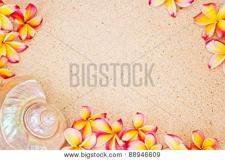Sea Shell And Frangipani Flowers On Sand, Top View, Summer Concept