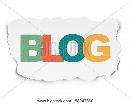 Web design concept: Blog on Torn Paper background
