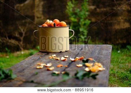 Fresh Orange Fruit On Wooden Background