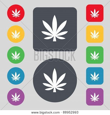Cannabis Leaf Icon Sign. A Set Of 12 Colored Buttons. Flat Design. Vector