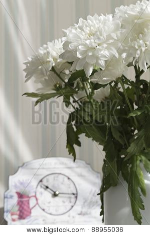 Bunch Of White Asters In Vase Against Blurred Striped Wallpapers