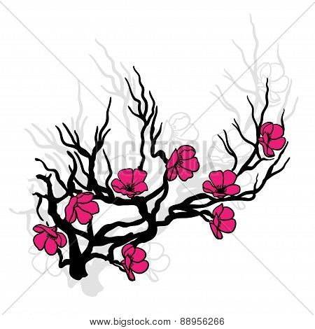 twig cherry blossoms