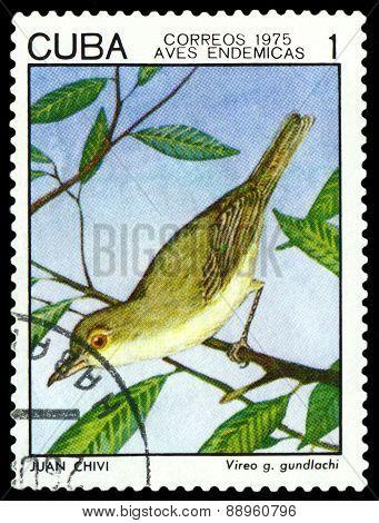Vintage  Postage Stamp.  Bird Vireo Gundlachi.