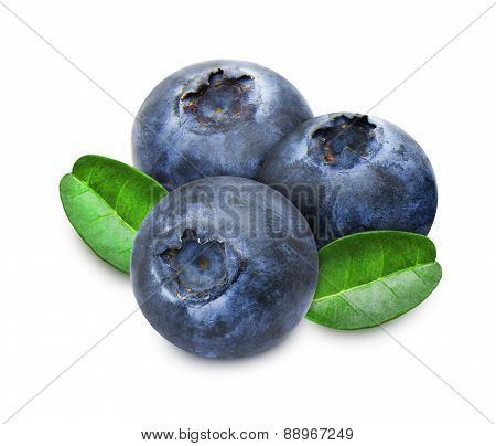Heap of fresh blueberries with leaves