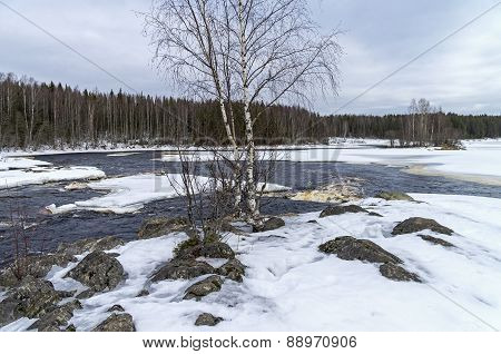 Rapids On Shuya River In Winter. Karelia, Russia.