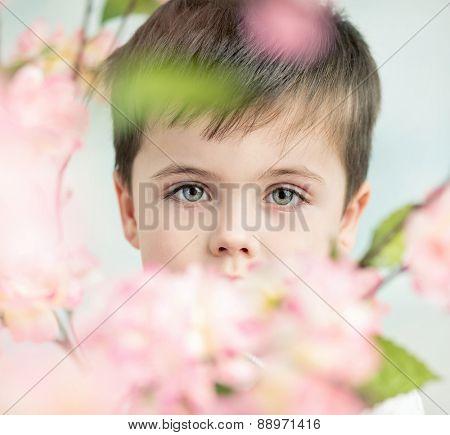 Young adorable boy