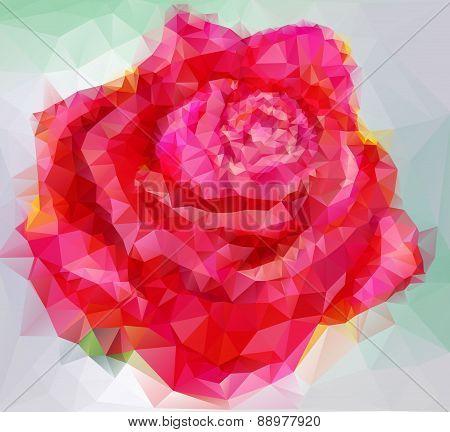 triangular style rose