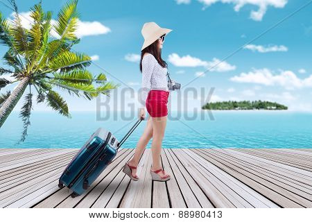 Traveler Carrying Suitcase At Pier