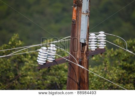 Cables of electric lines in a forest