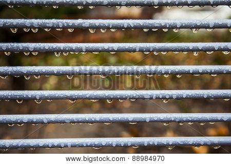 Raindrops On Metal Fence With Natural Blurry Background