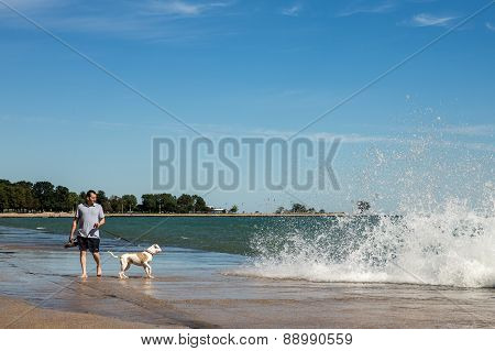 Man Walking Dog At Chicago Lakeshore