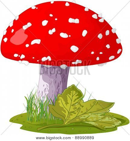 Illustration of amanita in a grass