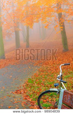 Bike Parked In Autumn Park