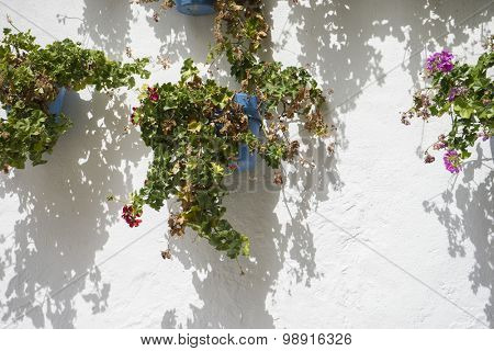 streets of Marbella in Spain with flowers and plants on the facade