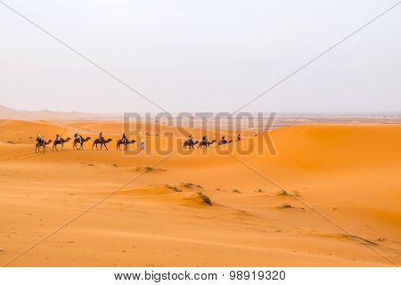 Dunes Erg Chebbi near Merzouga, Morocco - Camels caravane during a tour into the erg