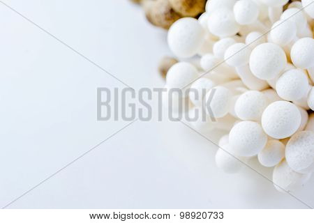Bunch Of White Bunapi Beech Mushrooms Or Shimeji Mushrooms