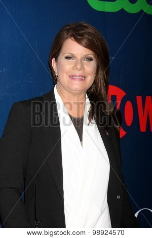 LOS ANGELES - AUG 10:  Marcia Gay Harden at the CBS TCA Summer 2015 Party at the Pacific Design Center on August 10, 2015 in West Hollywood, CA