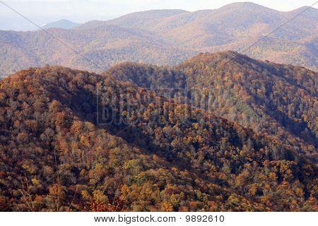Autumn Scenes in Nashville
