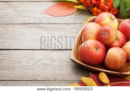 Autumn leaves, rowan berries and apples over wood background with copy space