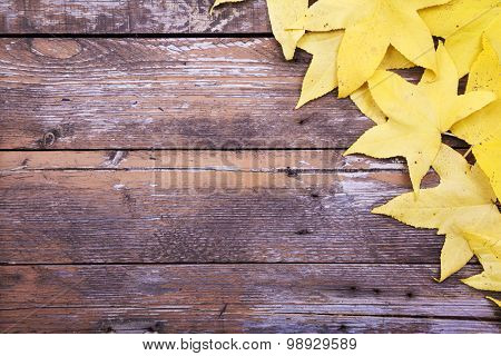 Yellow autumn leaves over wooden background
