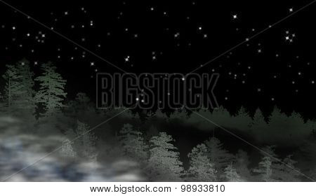 Landscape Of Misty Forest At Night