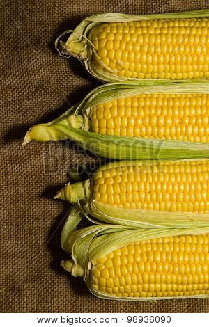Several Ears Of Corn On The Old Tissue