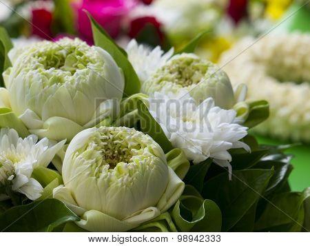 Bouquet Of Lotus