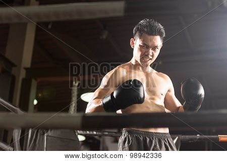 Young athletic Professional boxer is standing on the ring