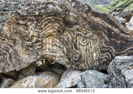 Metamorphic Rock With A Layered Texture