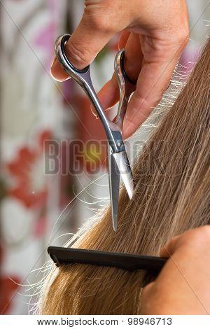 Hand Of Hairdresser Cutting Women's Hair
