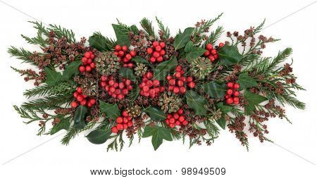Christmas and winter flora with holly, ivy, fir and cedar cypress over white background.