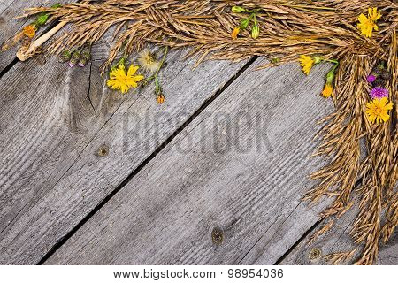 Autumn Frame Of Dried Grass And Flowers