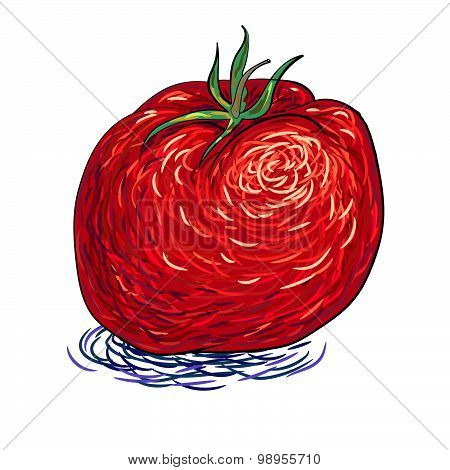 beautiful red tomato vegetable abstract vector art