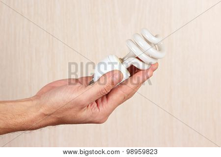 Hand holding a energy saving tungsten bulb on light wood background