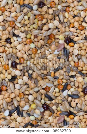 seamless background from different grains macro