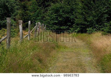 A path.