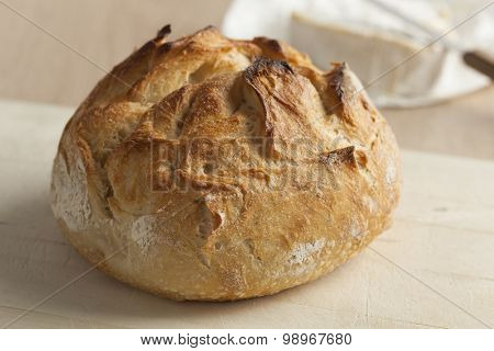 Fresh baked french farmers bread