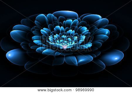 Fractal Flower In Blue. Computer Generated Graphics.
