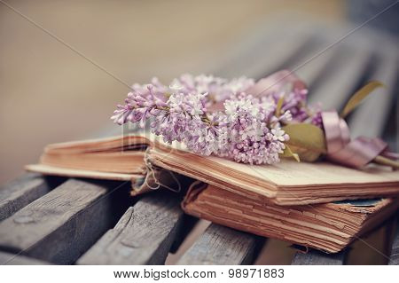 Lilac Branch With A Tape On The Book