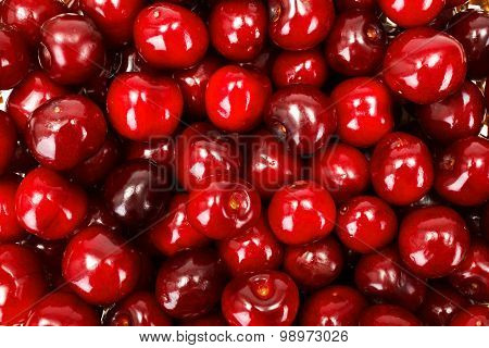 Sweet Cherry Berries Background (prunus Avium)