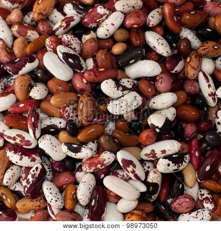 Kidney beans top view
