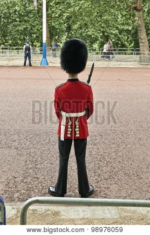 Troop Guard Near Buckingham Palace