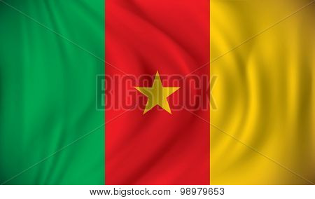 Flag of Cameroon - vector illustration