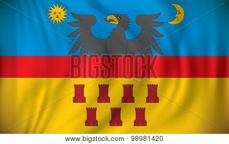 Flag of Transylvania - vector illustration