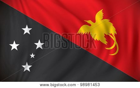Flag of Papua New Guinea - vector illustration