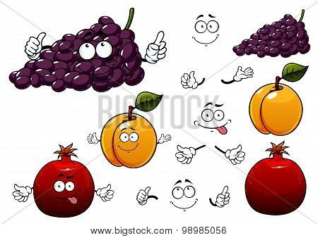 Grape, apricot and pomegranate fruits