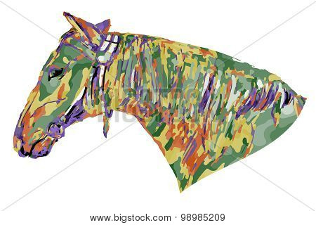 Horse Head Colored (psychedelic)
